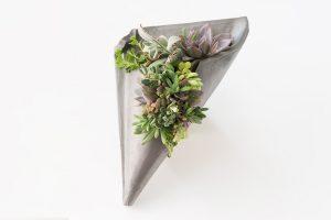 伝統のいぶし器多肉植物の壁掛けハンギング(小)