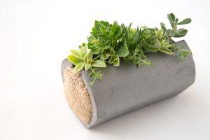 伝統のいぶし器多肉植物の寄せ植え、筒鉢(小)